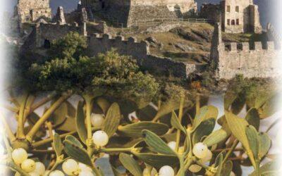Festa del Vischio a Saint Denis e il castello di Cly – Dicembre