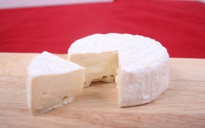 Dal latte al formaggio!